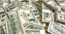 Dollar steadies after week of falls
