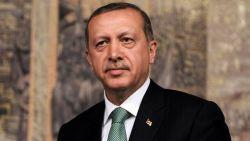 Erdogan: Turkey informed them before hitting PKK