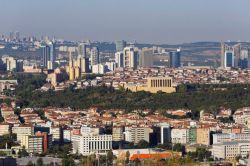 В Турции за сутки от COVID-19 скончались 19 человек