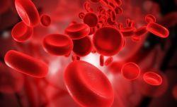 Медики обнаружили две новые группы крови