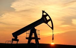 Oil prices increase rapidly