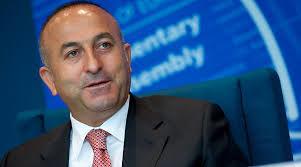 Çavuşoğlu Zalkaliani ilə görüşdü - Tiflisə dəstək