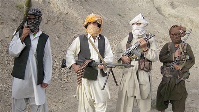 США и талибы установили канал военной связи