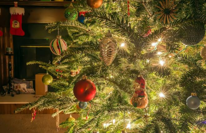 christmas trees have become a worldwide symbol for peace and good cheer they are at the center of one of the largest family gatherings of the year