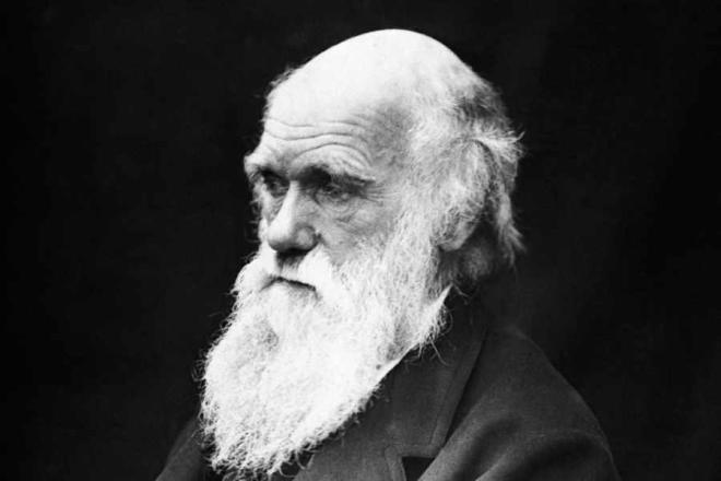 Türkiyə Darvini dərsliklərdən çıxartdı