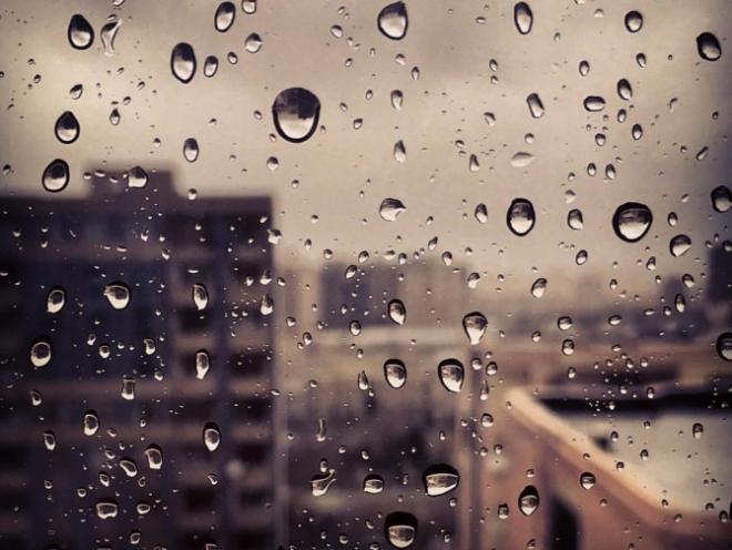 Завтра ожидается дождливая погода