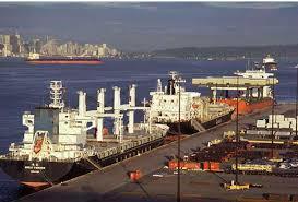Bakı Limanı bu statusa malik ilk liman olacaq - Foto
