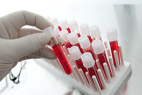 Ученые вырастили искусственные тромбоциты