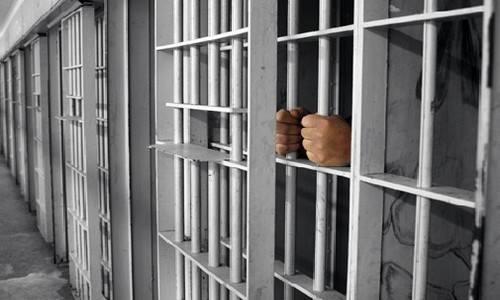 Сколько осужденных освобождены от наказания?