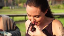 Анджелина Джоли накормила детей пауками - Видео