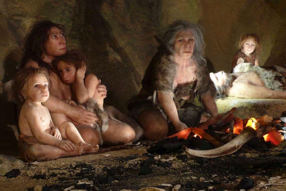 """Вычислено точное """"меню"""" неандертальцев"""