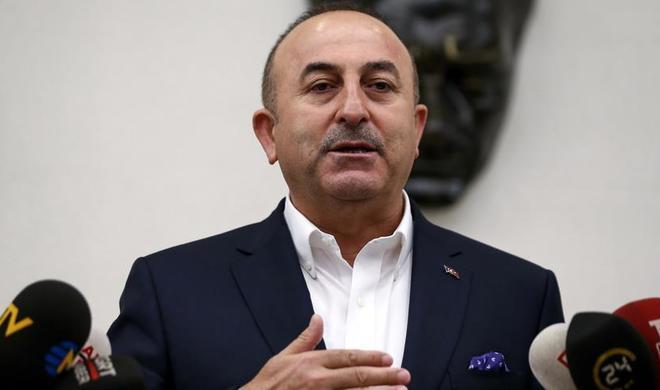 Turkish foreign minister praises Turkish Airlines