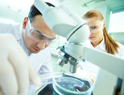 """Ученые научились уничтожать """"бессмертные"""" раковые клетки"""