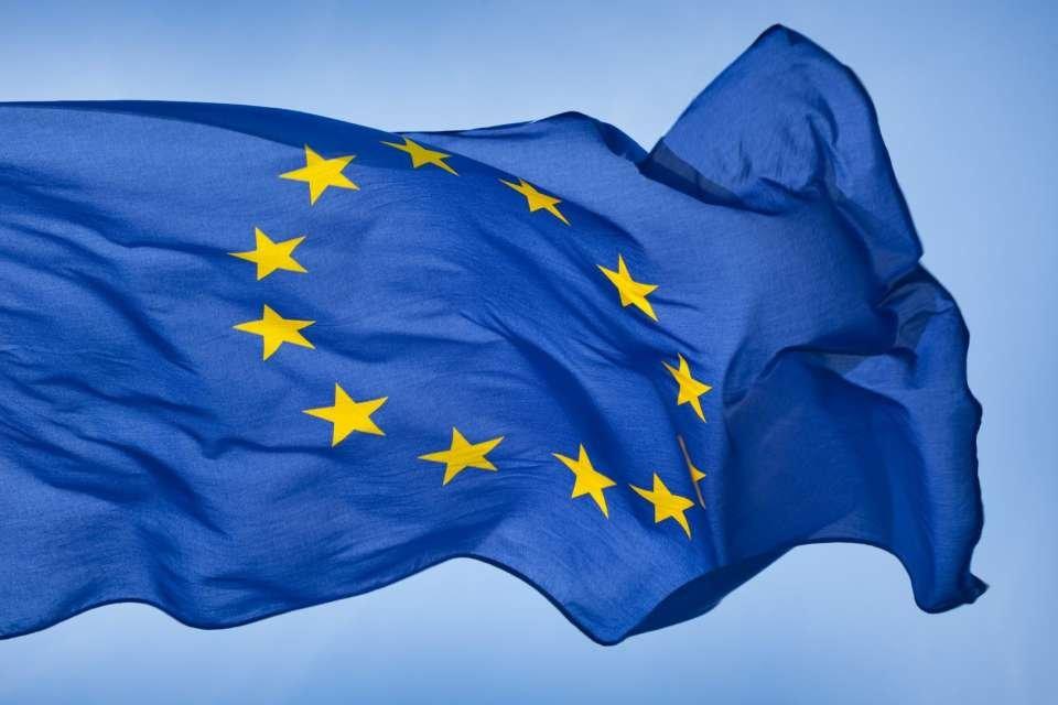 ЕС отзывает посла из России