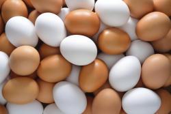 Bu insanlar mütləq yumurta yeməlidir