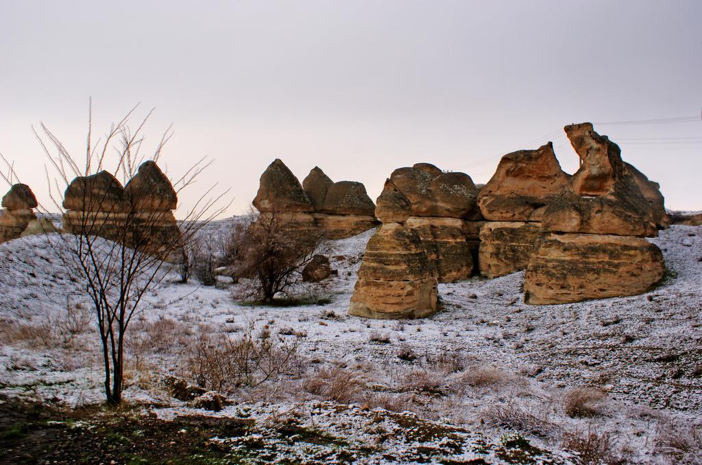 Həmədanda 2000 illik şəhər aşkarlandı