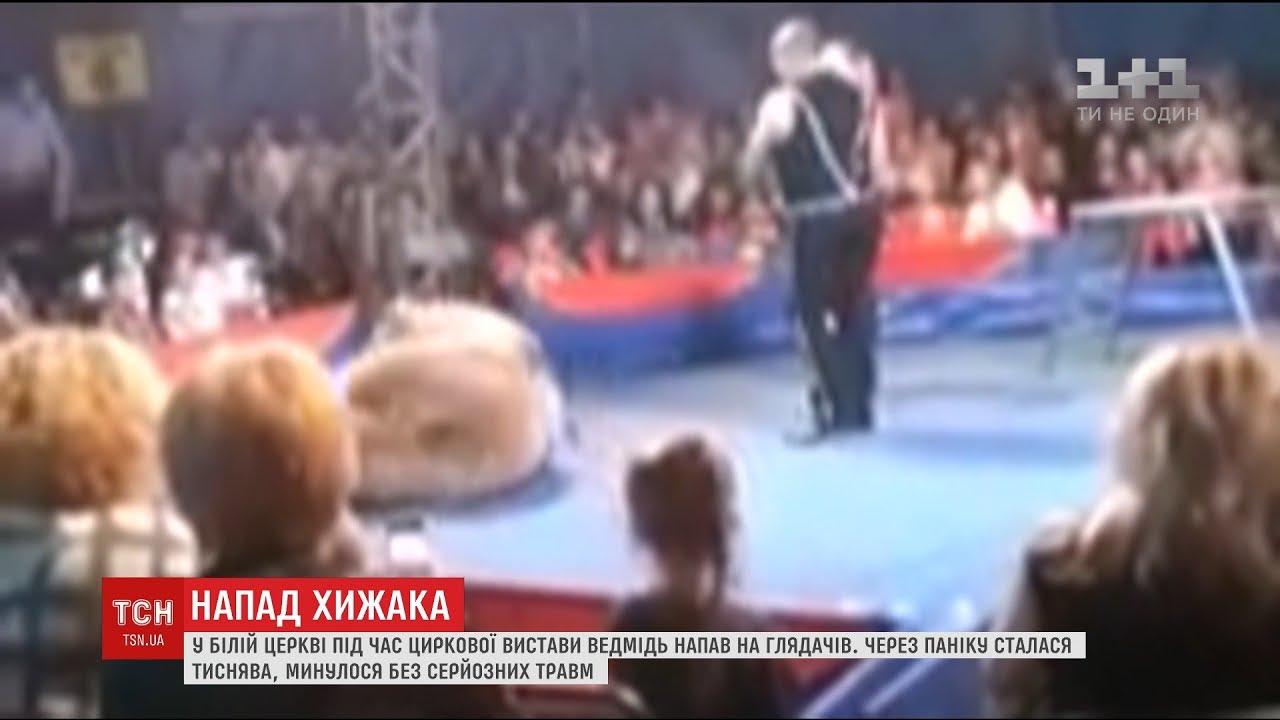 Sirkdə ayı insanlara belə hücum etdi - Video