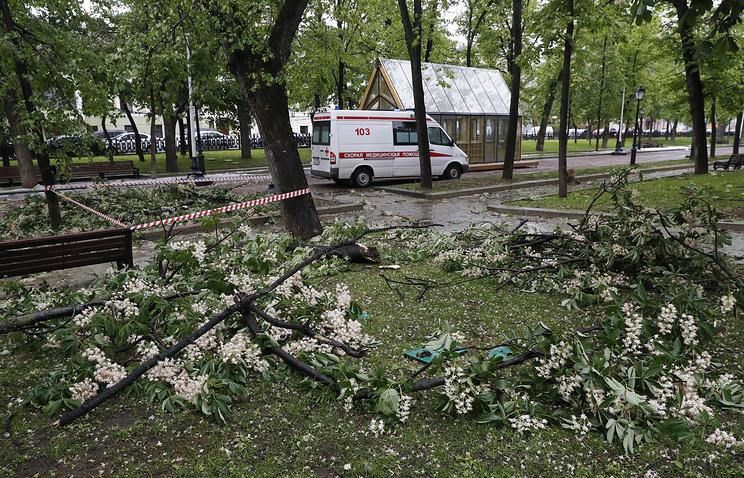 В Москве из-за урагана  погибли 2 человека