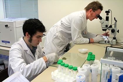 Создан антибиотик, против которого бактерии бессильны