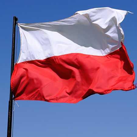 Polşa: Çin NATO üçün hərbi çağırış deyil