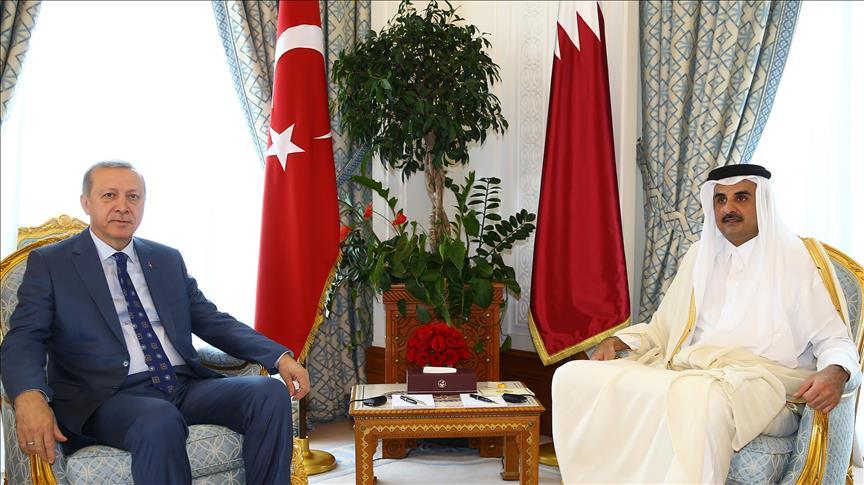 Эрдоган провел переговоры с эмиром Катара