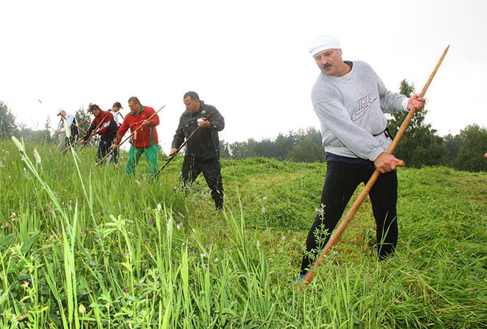 Лукашенко показал мастер-класс владения серпом