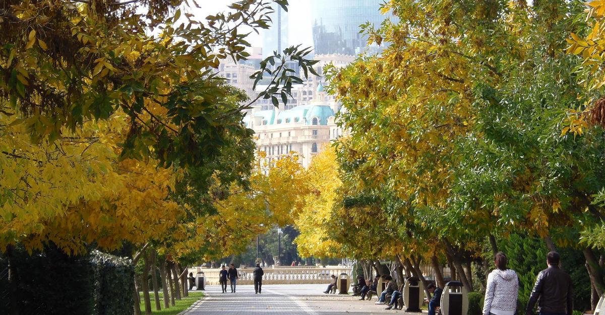 Завтра в Баку сохранится умеренная погода