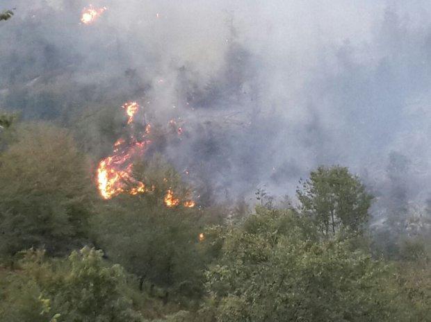 Türkiyədə fəlakət: 2 kənd boşaldıldı, evlər alovlandı