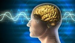 Early brain 'signs of Parkinson's' found