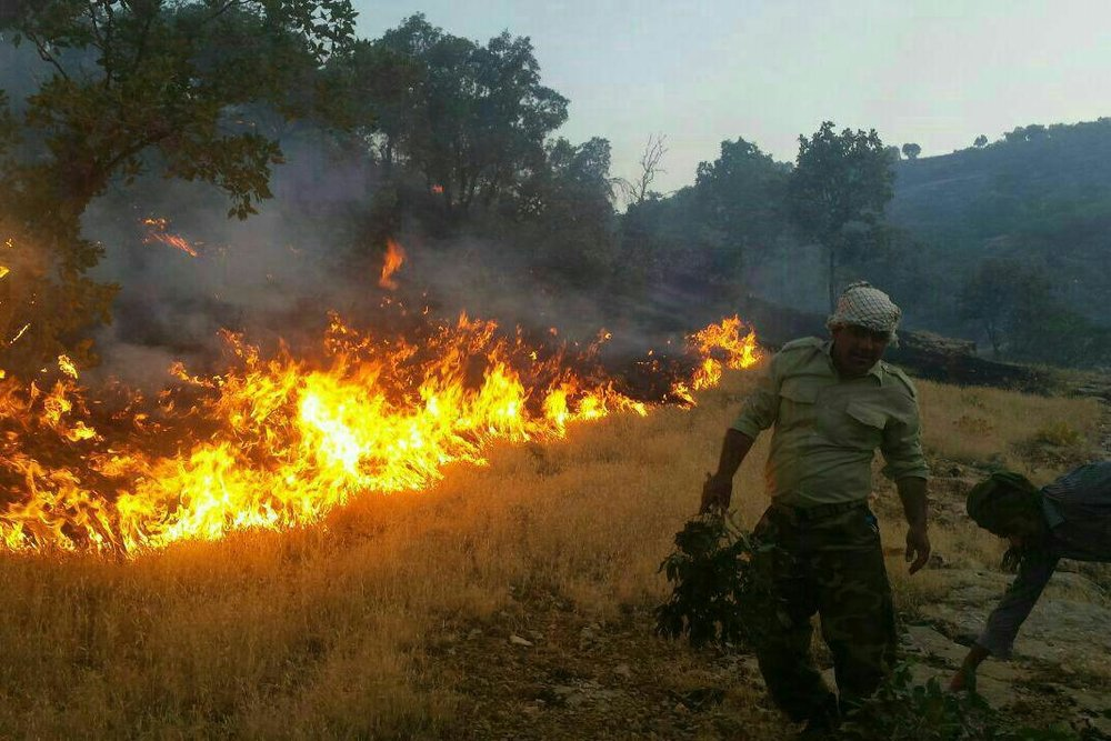 Forest fires also broke out in Greece