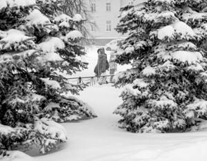Rusiya 1 gündən sonra donacaq - Anomal soyuqlar