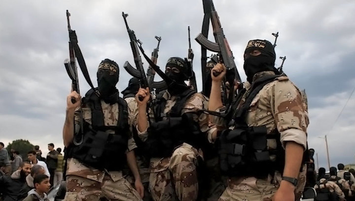 В коалиции рассказали, где скрываются боевики ИГ