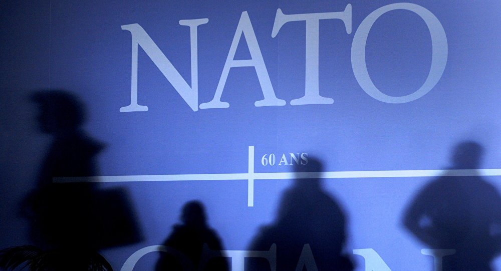 NATO: Differences between members to not harm alliance
