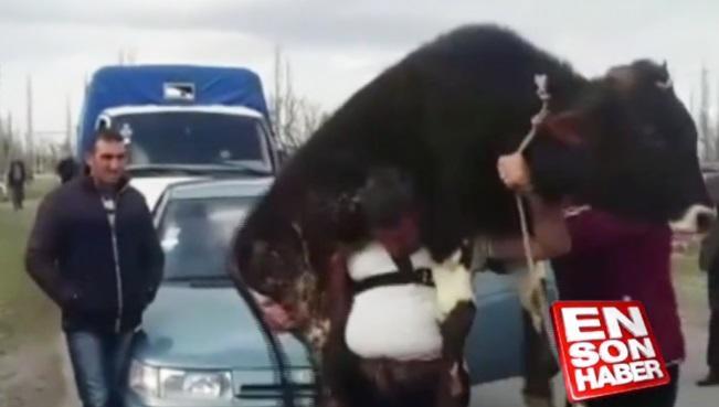 """""""Tərtərin Fitnəsi"""" türk mediasında - Video"""