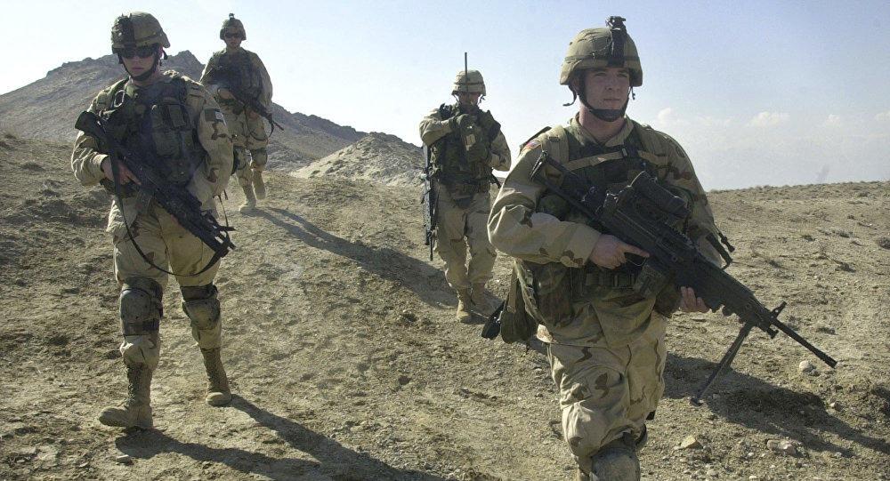 Afghan forces kill 81 militants in northern Balkh province