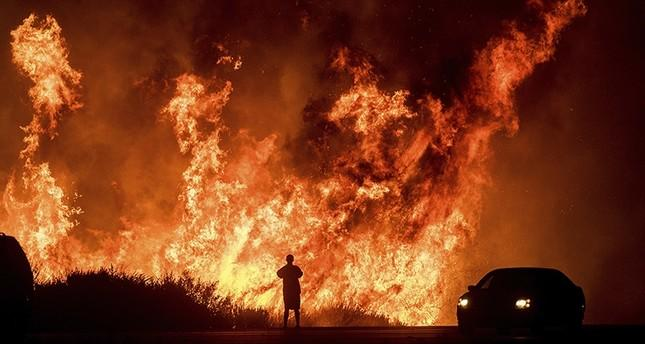 Death toll in California wildfire reaches 59 -