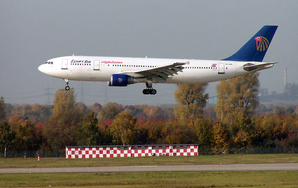 Египетский самолет чуть не разбился в Домодедово