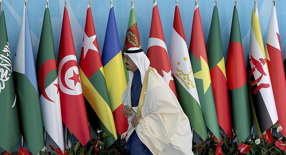Король не приехал на саммит по Гудсу в Стамбул