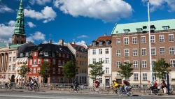 Дания легализовала каннабис