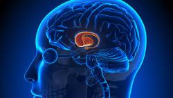 Найден простой способ обнаружить болезнь Альцгеймера