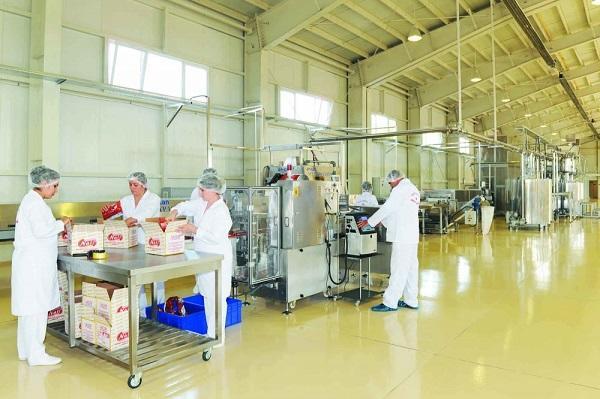Komitə açıqladı: Qənd istehsalı azalıb
