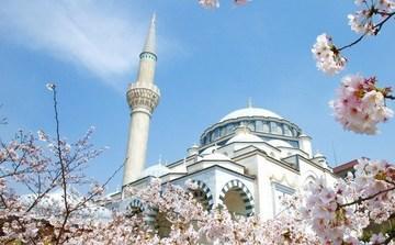 Турецкая мечеть в сердце Токио - Фото