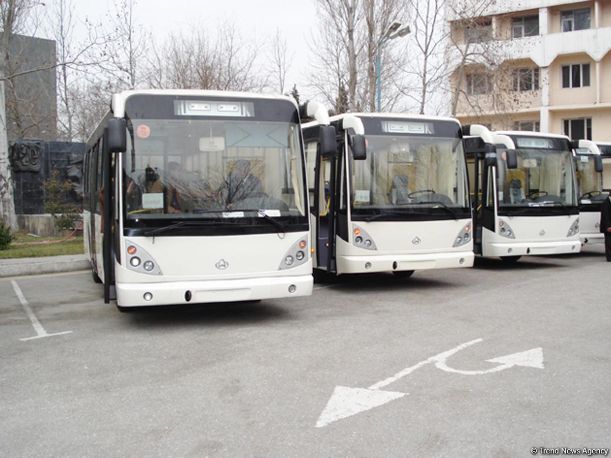 Ziya Məmmədovun gətirdiyi avtobuslar hərraca çıxarıldı