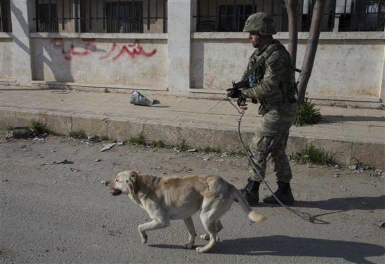 Трое турецких военных подорвались на мине в Африне
