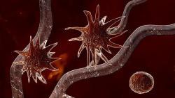 Как уберечься от рака