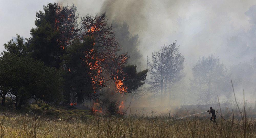 В Азербайджане начался лесной пожар