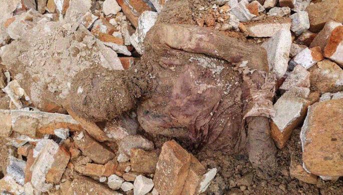 Rza Pəhləvinin mumiyası tapıldı - Foto