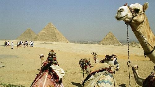 В Египте торговцам запретят приставать к туристам