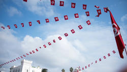 Tunisian president calls for constitutional amendment