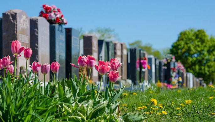 В Германии разыгрывают места на кладбище